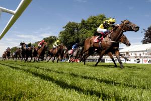 York Ebor Betting Odds, Tips & Offers