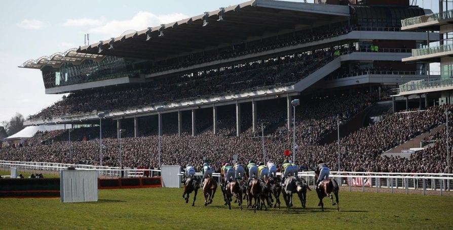 cheltemham races photo