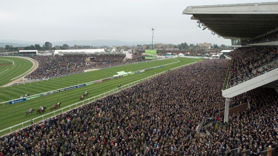 cheltenham races photo