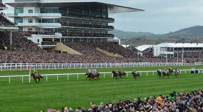 horse race at Cheltenham festival