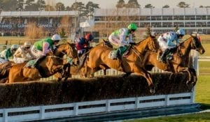 Cheltenham Festival Free Bets, Odds, Offers and TV Schedule