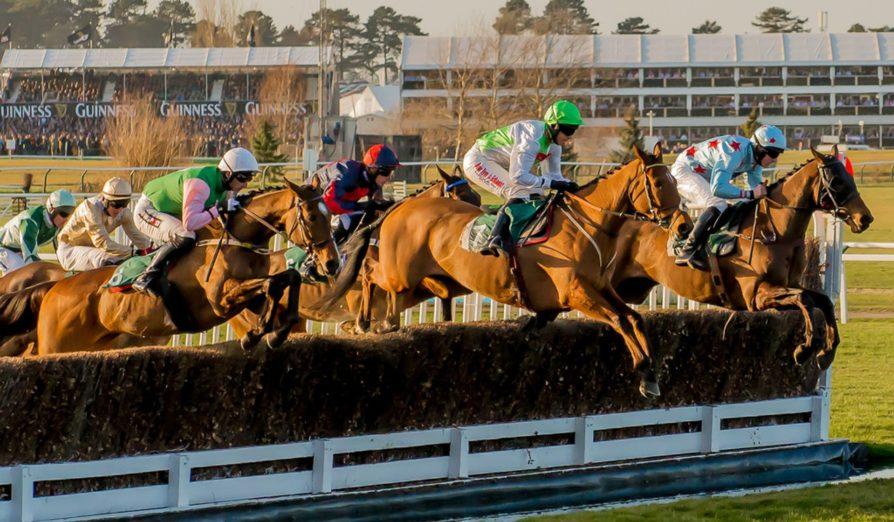 horses and riders cheltenham festival