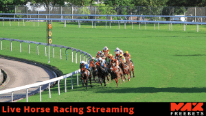 live horse racing streaming